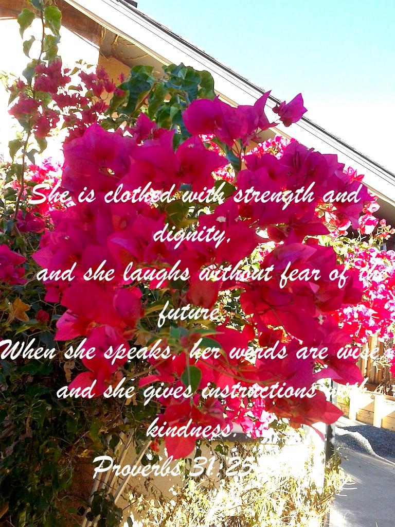 Proverbs 31:2526